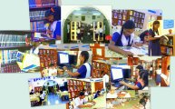 libcoll1